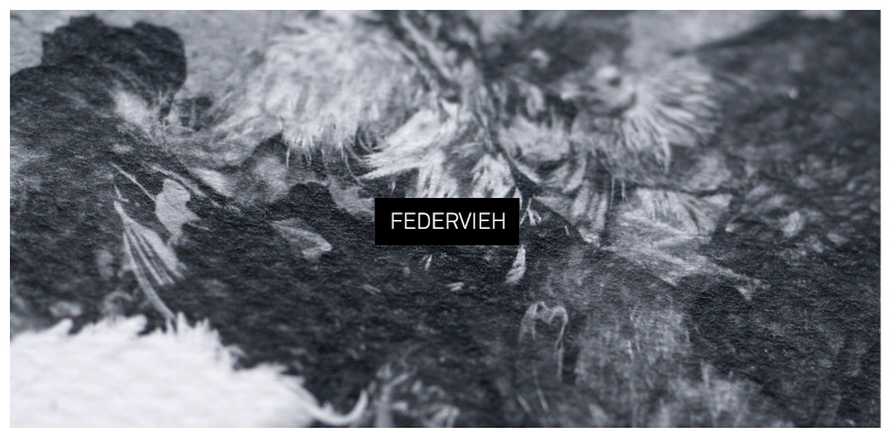 Federvieh